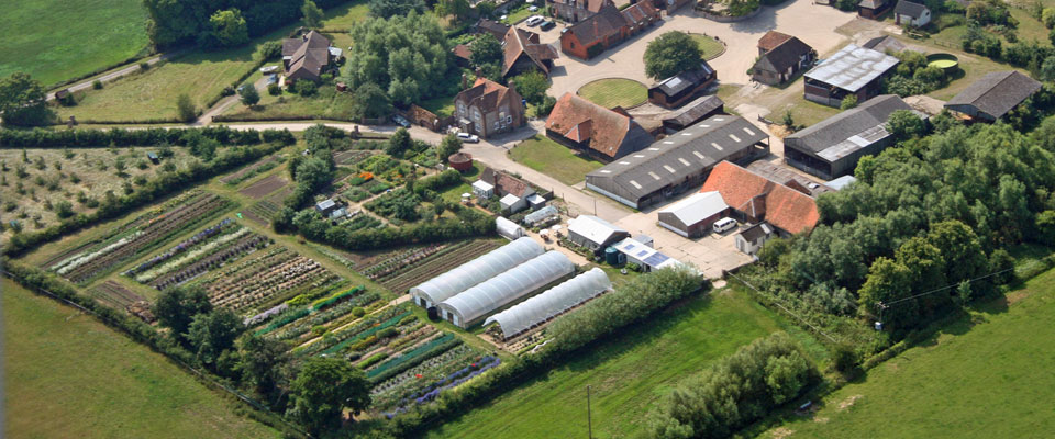 Aerial photo of flower farm site