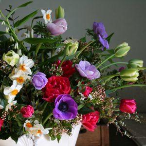 Ranunculus, Narcissi, Tulips