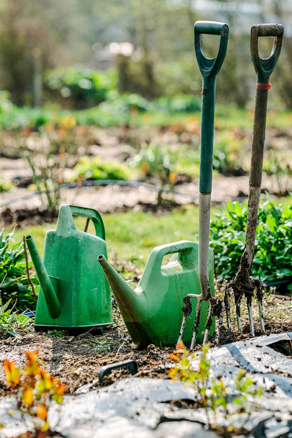 two border forks and 2 watering cans