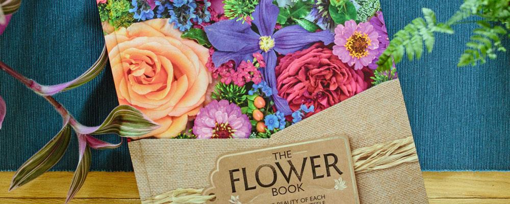 The Flower Book by Rachel Siegfried