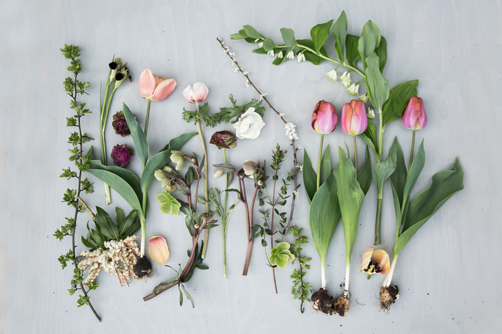 The Art Of The Flat Lay With Eva Nemeth Green And