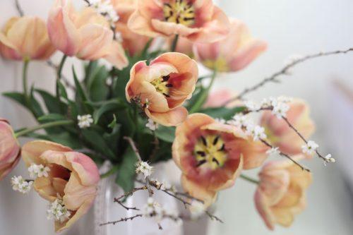 Tulip arrangement by G&G