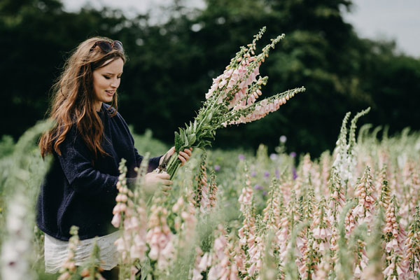 Picking foxgloves, pic by Eva Nemeth