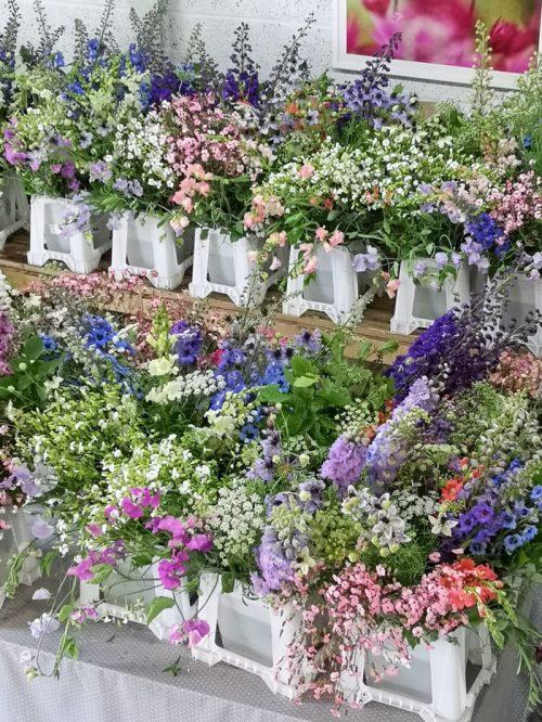 PYO buckets of flowers